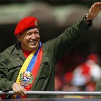Hugo Chávez, gorila macho