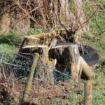 Site 100 - Huncote