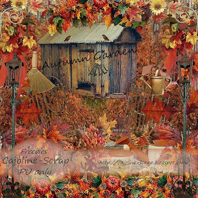 http://cajoline-scrap.blogspot.com/2009/10/freebie-kit-autumn-garden-pu.html