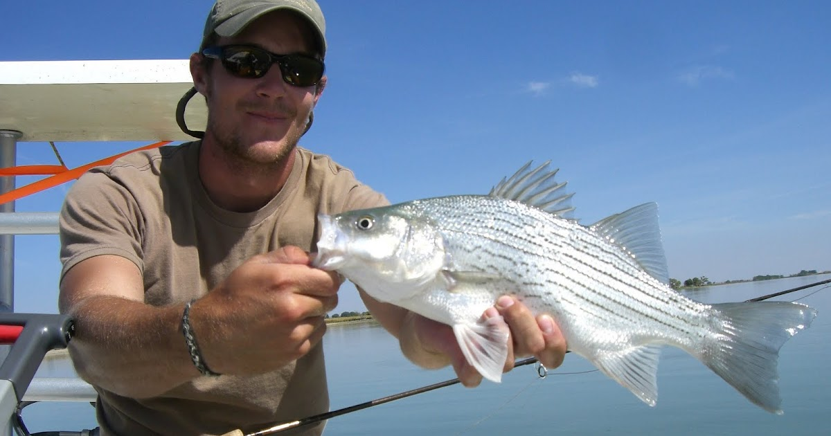 Colorado fly fishing reports how to salvage a fishing trip for Colorado fly fishing reports