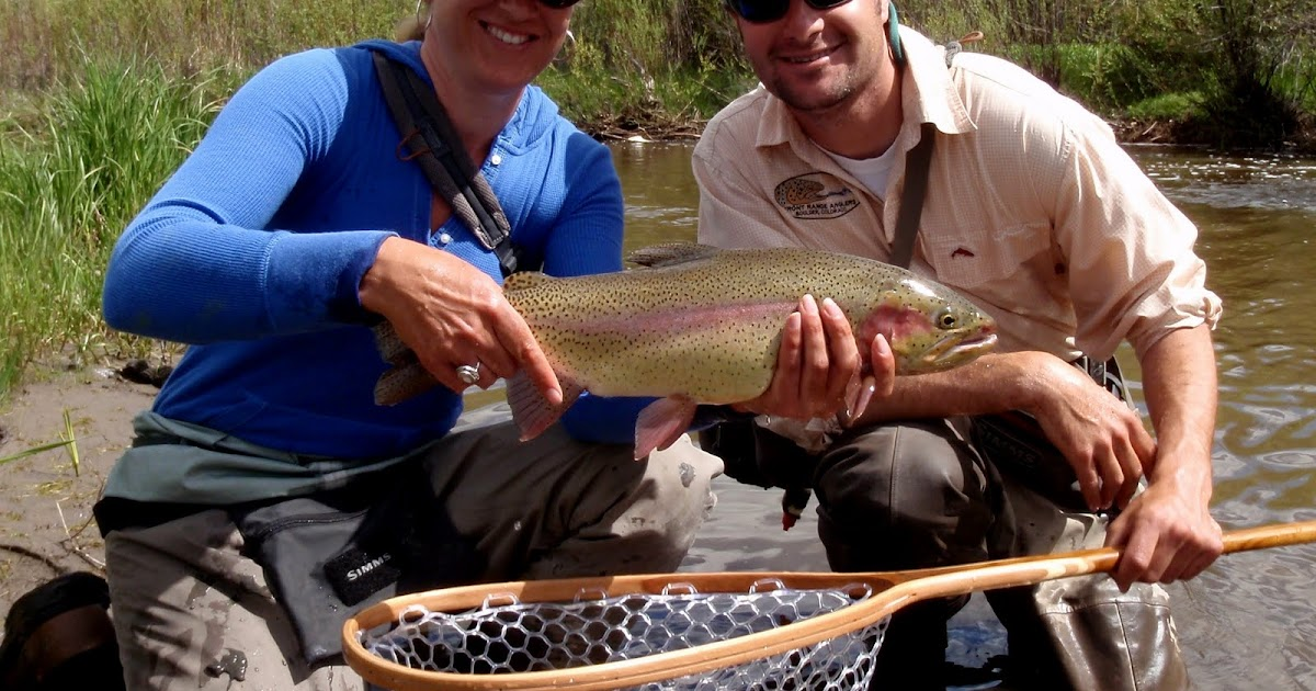 Colorado fly fishing reports fishing steamboat springs for Colorado fly fishing reports
