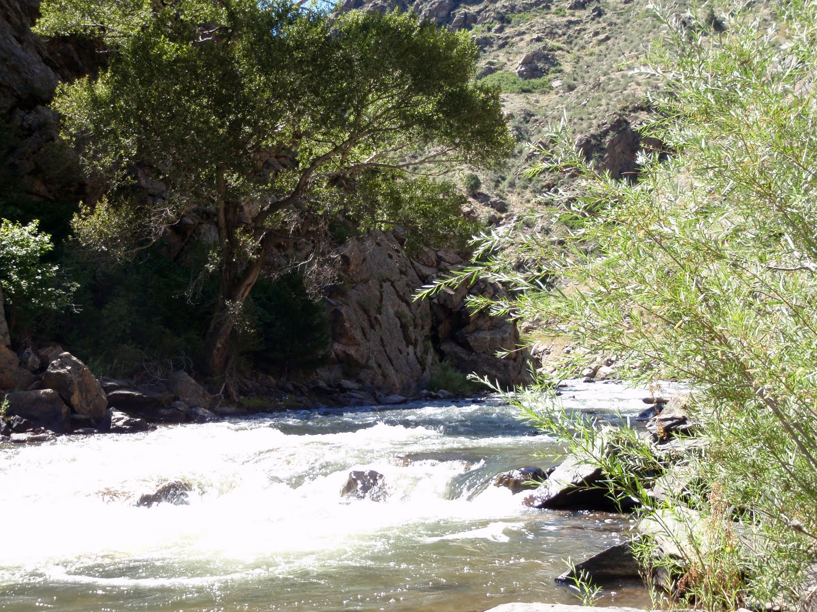 Colorado fly fishing reports september 2010 for Clear creek fishing report