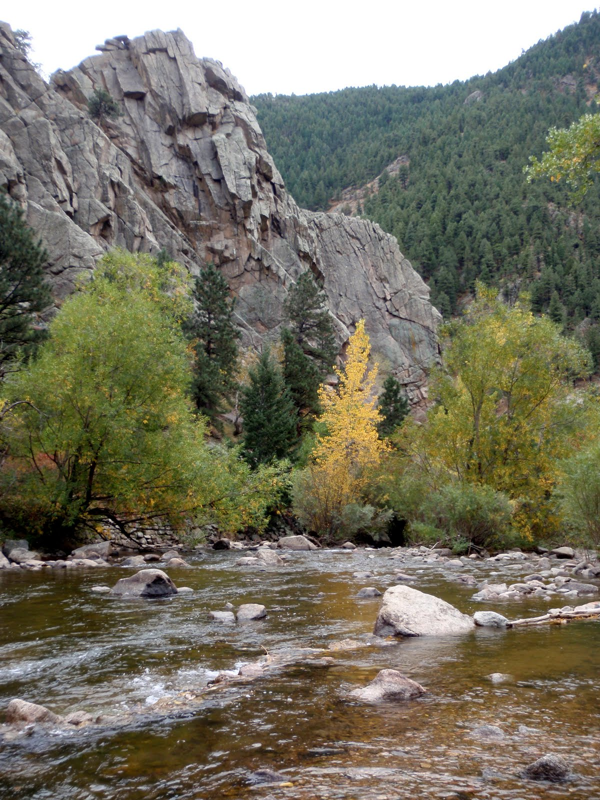 Colorado fly fishing reports boulder creek report for Boulder creek fishing