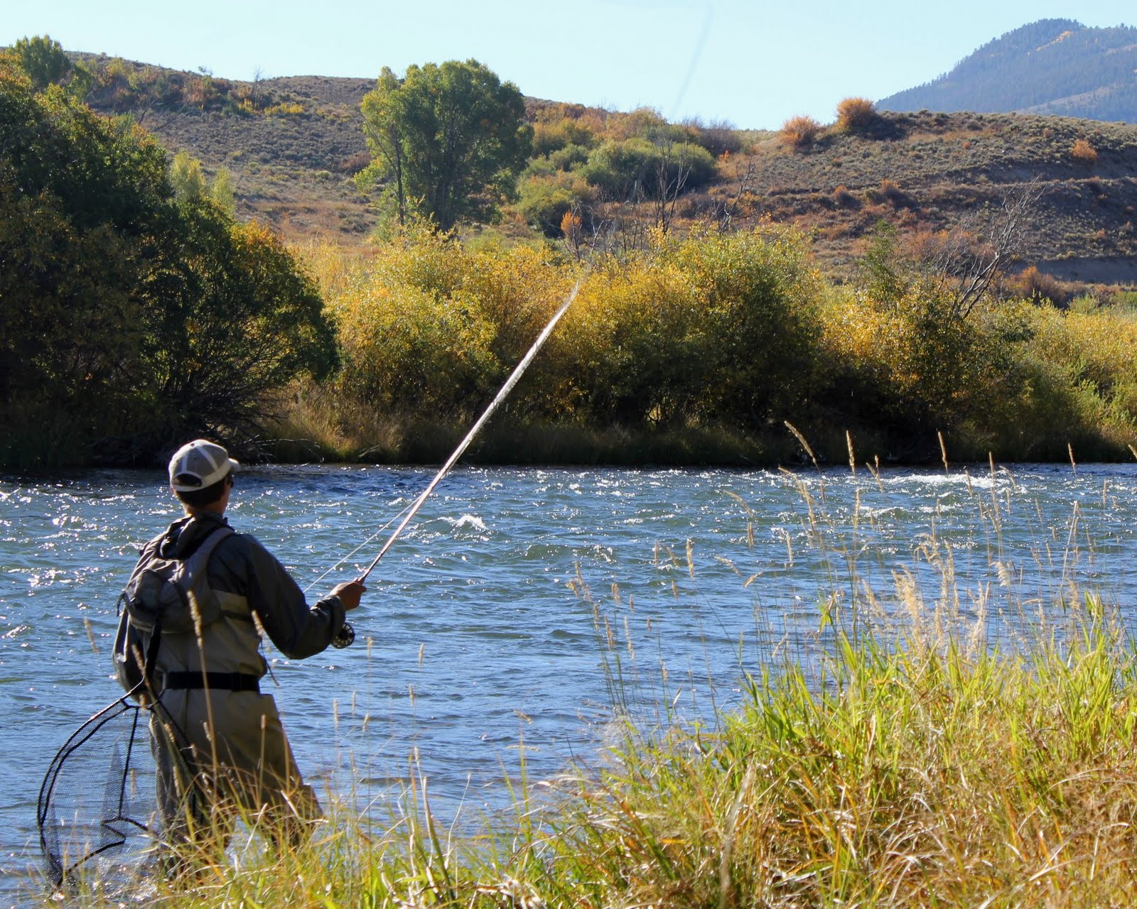 Colorado fly fishing reports americas cup fly fishing for Fly fishing photography