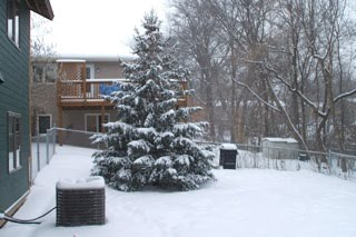 [snowy+tree+blog]