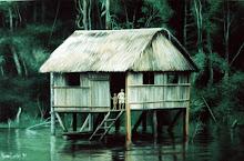 Casa no Rio Moa