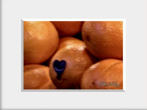 Love & Orange   Aşk & Portakal