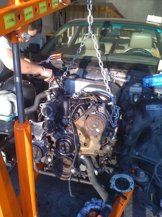 BMW E36 and E30 V8 swaps  July 2010