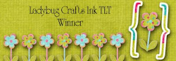 "I was a Blog Hop Winner February 2012 and winner of May 2012 ""Birthdays"" challenge"