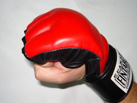 GUANTES MMA(ARTES MACIALES MIXTAS)!