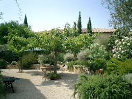 The lovely garden at Valescure