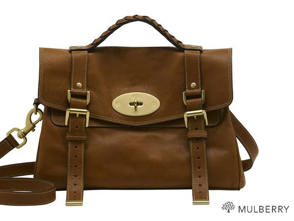 Alexa Mulberry Bag