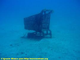 El mar no es un vertedero