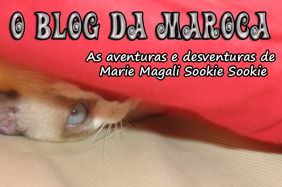 O Blog da Maroca