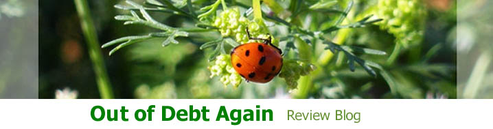 Out of Debt Again Review Blog