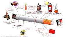Kandungan Sebatang Rokok