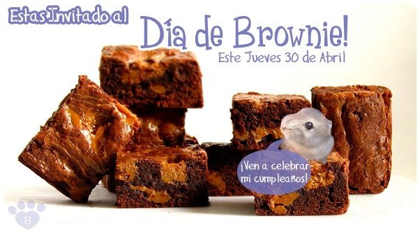Día de Brownie