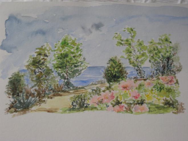 vegetation de bord de mer