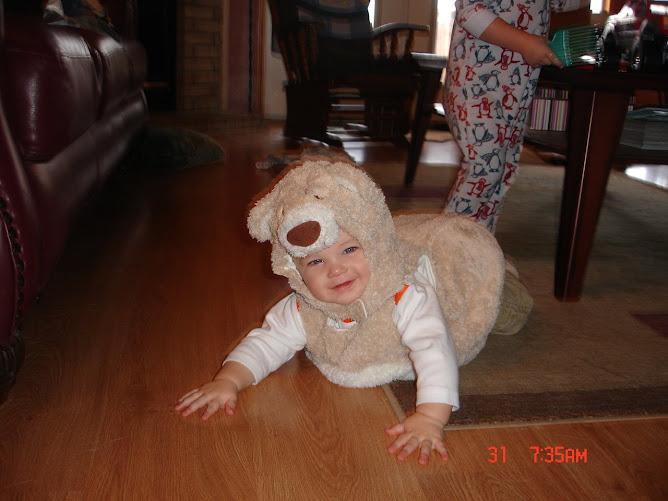 Noah the Bear