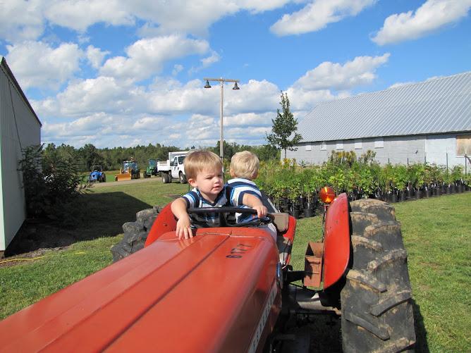 Tractor Tots