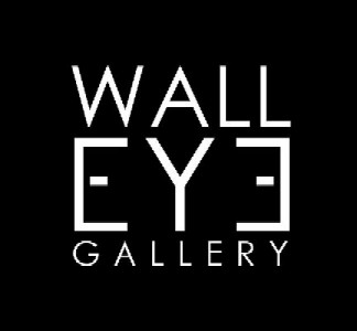 Wall Eye Gallery