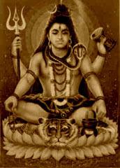 Shiva-Pashupati