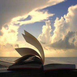 Mais comentários, a boa escrita, livro