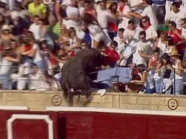 A bull jumps 10 metres from the ring into the stands at the Tafalla bullring in Spain,40 people were injured when the bull leapt into the packed grandstands