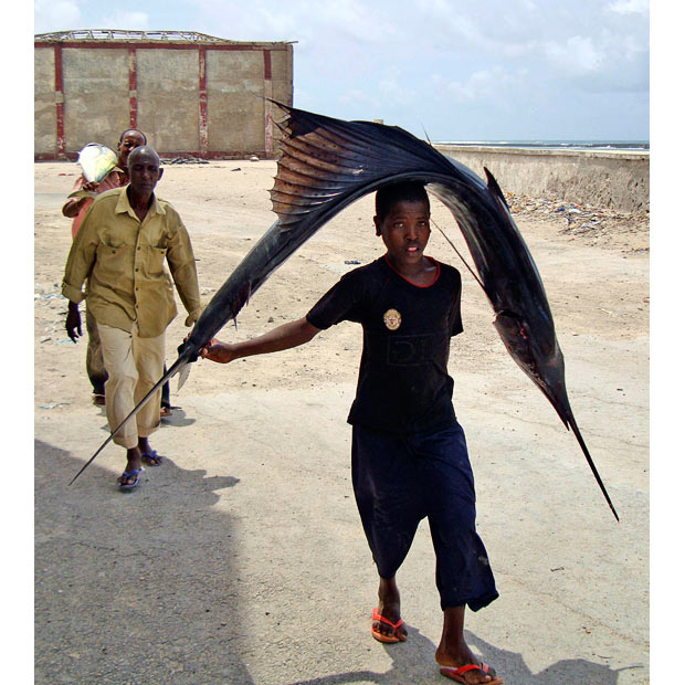 A Somali boy carries a sword fish on his head to take to the market in Mogadishu
