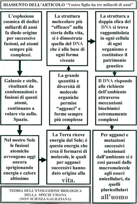 26 - RIASSUNTO EVOLUZIONE BIOLOGICA