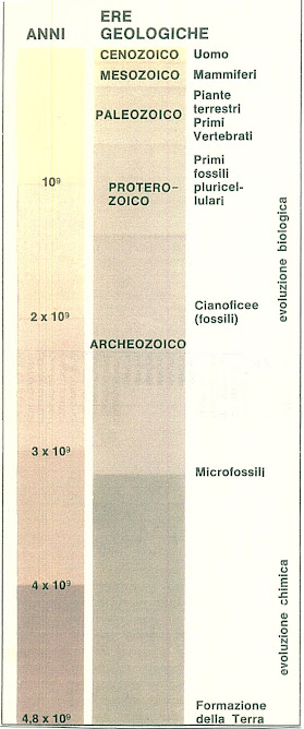 25 - EVOLUTION OF LAND