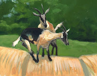 Zdepski's painting of two goats playing king of the hill, acrylic on d' arches