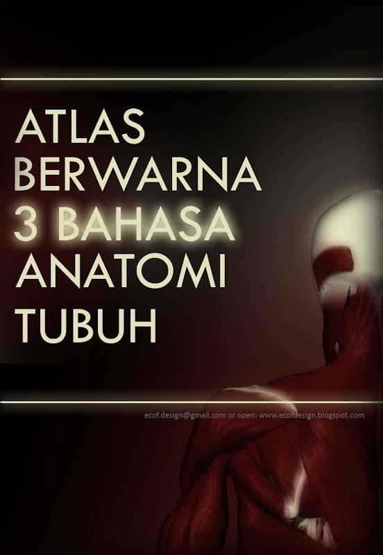 Book Cover ATLAS BERWARNA 3 BAHASA ANATOMI TUBUH for Salemba  title=