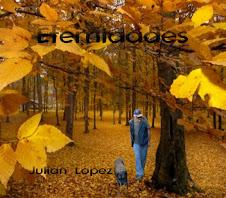 Bello otoño en el bosque