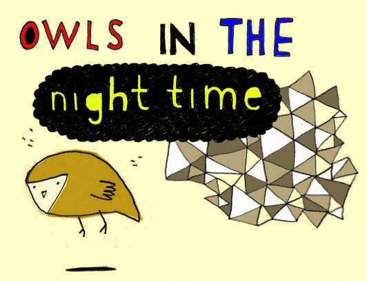 owls in the night time