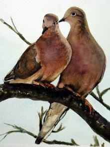 pair of mourning doves, happy, not sad