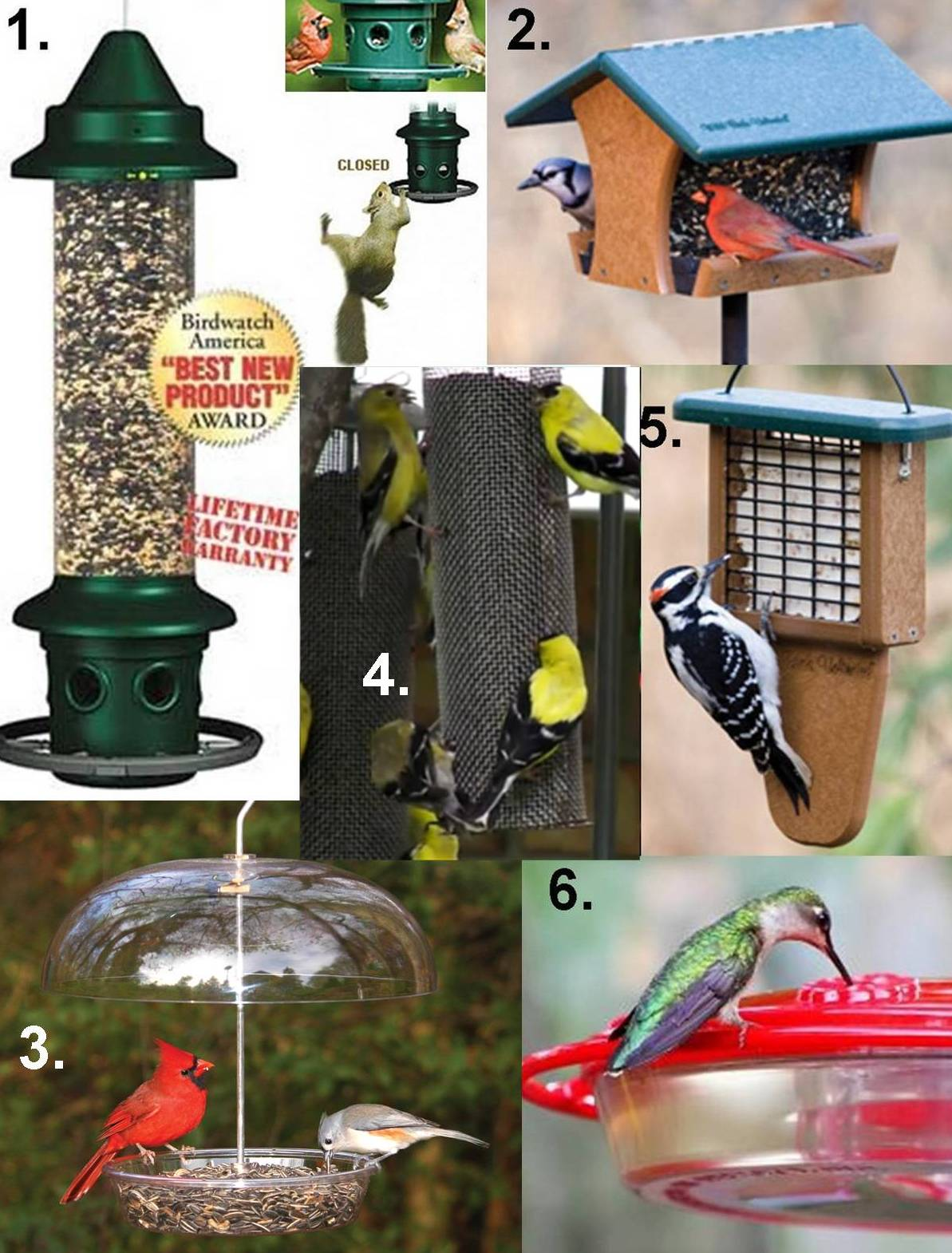 Wild Birds Unlimited Has Best Birdfeeders