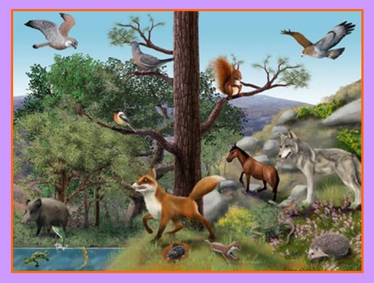 seres vivos como plantas animales y oros factores inertes como suelo