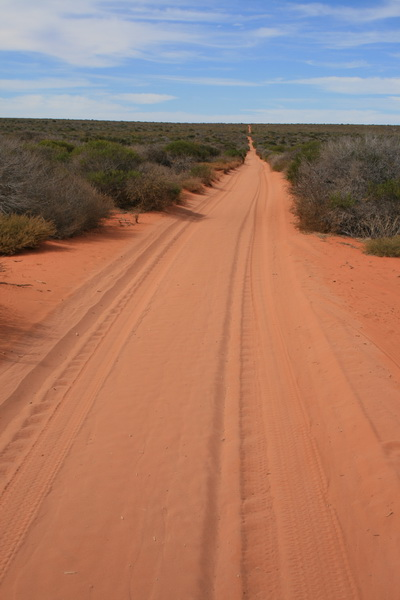4x4 Track Francois Peron National Park, Western Australia - © CKoenig