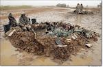 Iraq's Pics