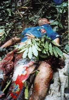 EU Sim Te Mostro A Realidade!: mamonas assassinas mortos