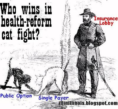 Health-reform cat fight | illinillinois.blogspot.com
