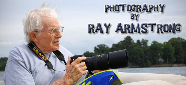 PHOTOGRAPHY BY RAY ARMSTRONG
