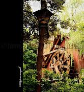 Tokyo Disney Land (tokyo disney land )