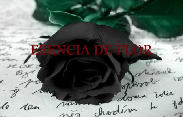 Esencia de Flor
