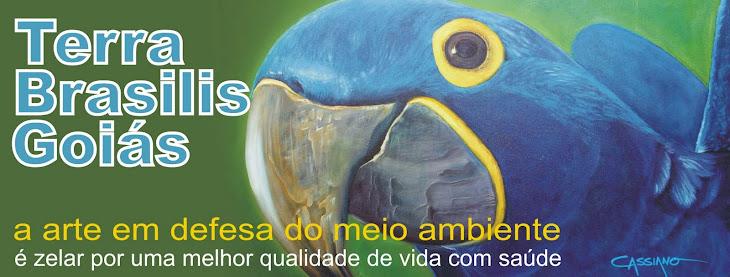 Terra Brasílis Goiás