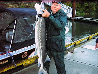 Sturgeon fishing willamette river sturgeon report for Willamette river fishing report