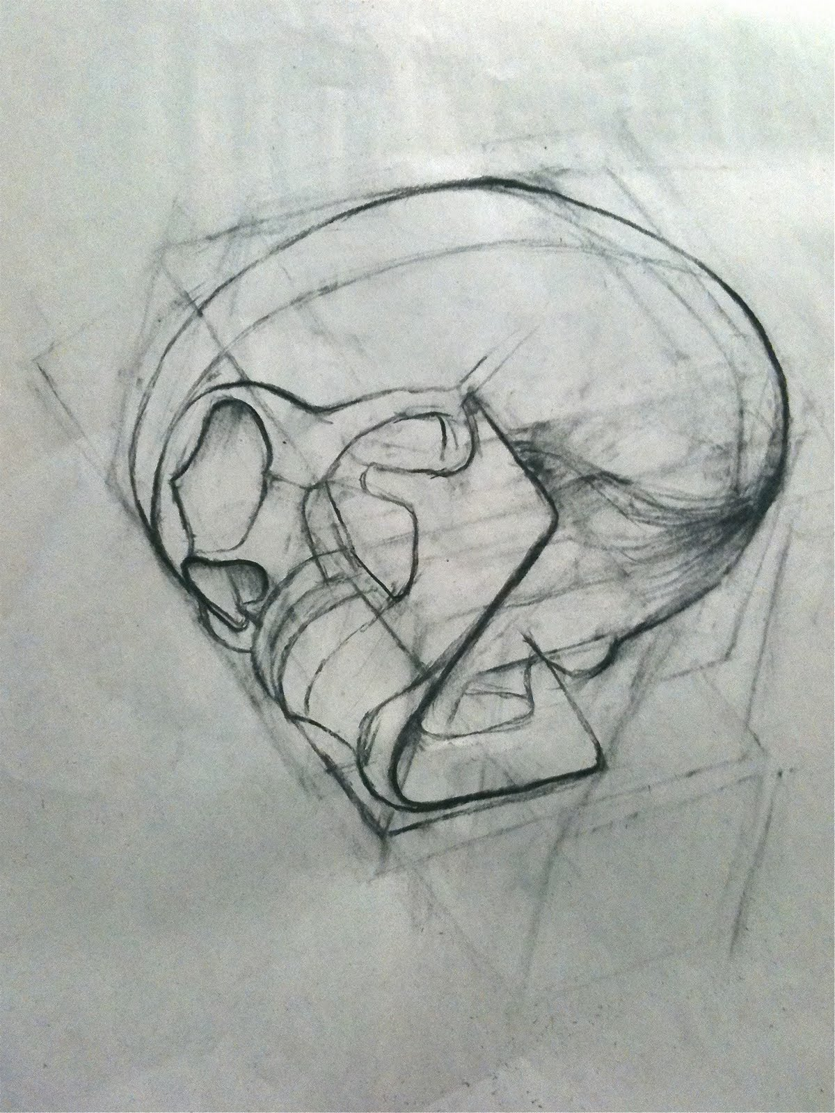 Skull with Flower Drawings