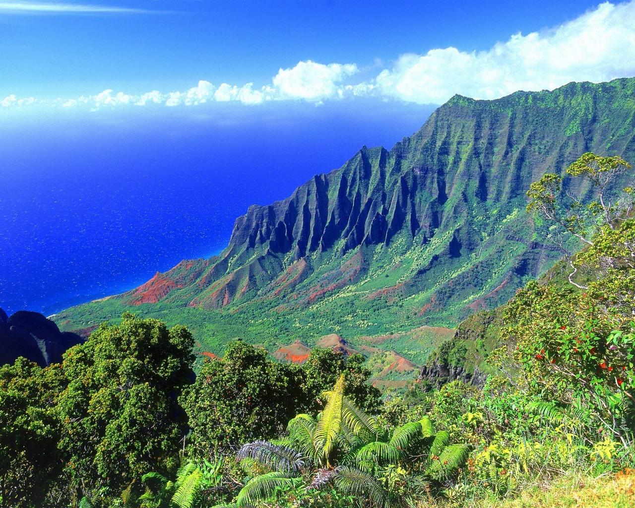 http://4.bp.blogspot.com/_okrHfSI-te4/TLIVJTKfL3I/AAAAAAAAAN0/g-h5rrBJXBA/s1600/the_kalalau_valley_kauai_hawaii-1280x1024.jpg