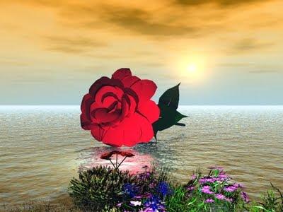 paisajes de amor. amor gif. (POEM concatenated)